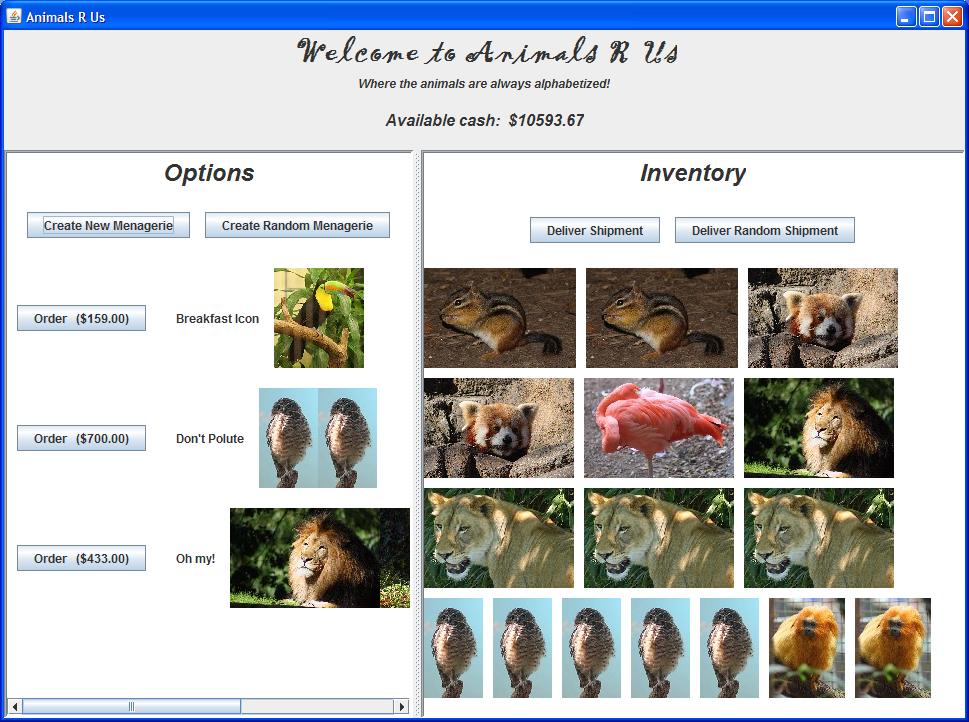 CMSC 131: Pet Store Project