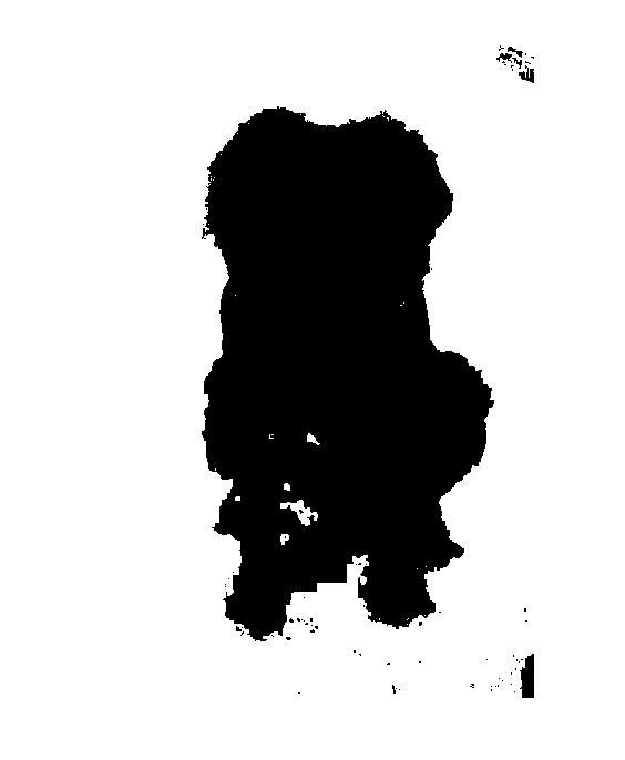 CMSC 426 Image Processing