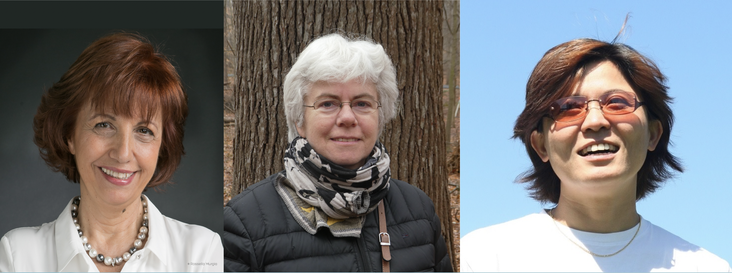Descriptive image for Leila De Floriani, Catherine Plaisant and Bongshin Lee Inducted into IEEE Visualization Academy