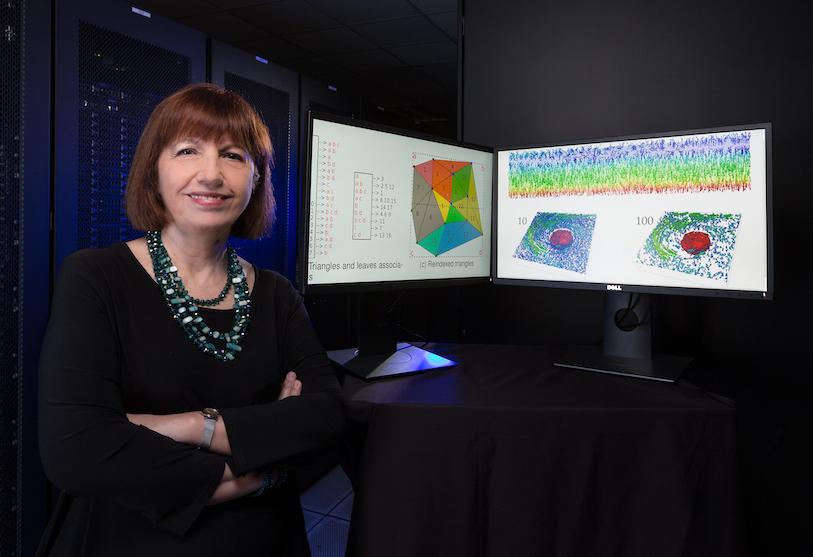 Descriptive image for Leila De Floriani Elected to Serve as IEEE Division VIII Delegate/Director