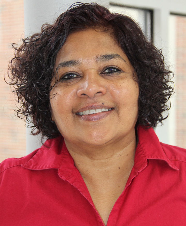 Descriptive image for Affiliate Professor Louiqa Raschid Is Named an IEEE Fellow